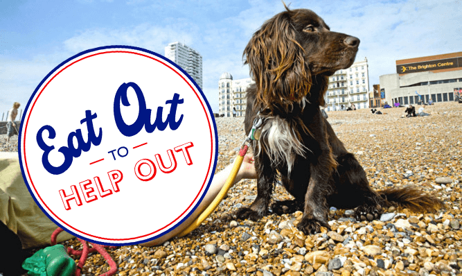 eat out to help out brighton dogs