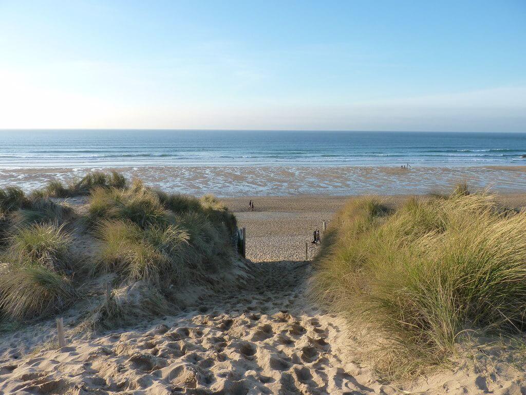fistral beach dog friendly